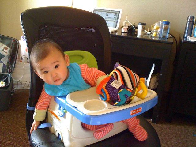 Fisher Price Healthy Care Deluxe Booster Seat review